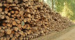 Biomass Supplier List (BSL) Biomass Fuel Sustainability Required from 5th October 2015