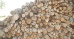 Changes to the Biomass Suppliers List